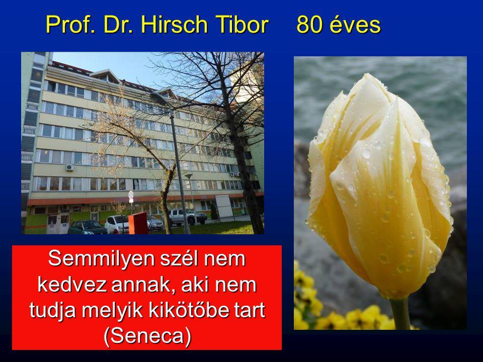 Prof. Dr. Hirsch Tibor 80 éves