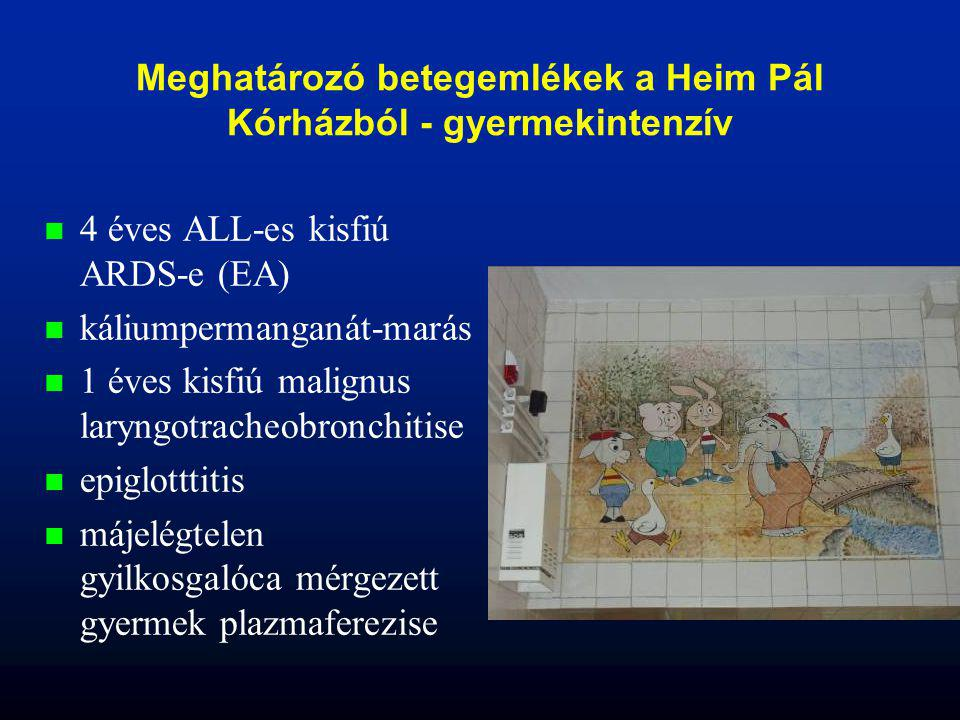 Meghatározó betegemlékek a Heim Pál Kórházból - gyermekintenzív