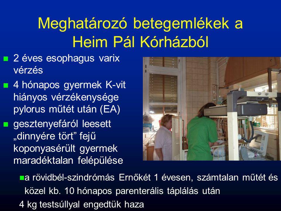 Meghatározó betegemlékek a Heim Pál Kórházból