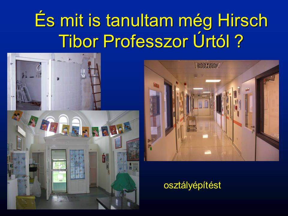 És mit is tanultam még Hirsch Tibor Professzor Úrtól