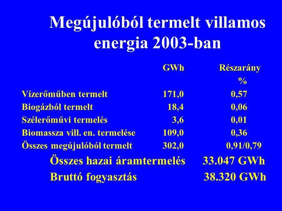 Megújulóból termelt villamos energia 2003-ban