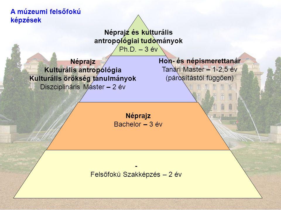 A múzeumi felsőfokú képzések