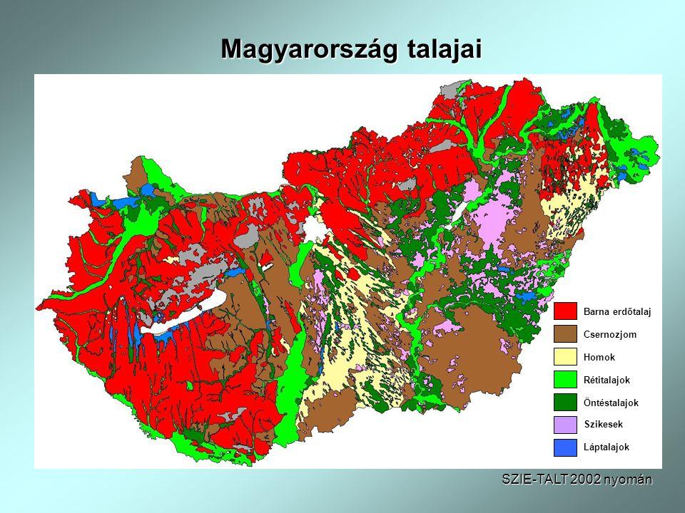 Magyarország talajai SZIE-TALT 2002 nyomán Barna erdőtalaj Csernozjom