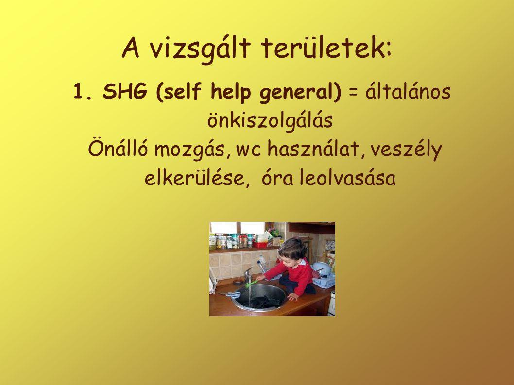 A vizsgált területek: 1. SHG (self help general) = általános önkiszolgálás.