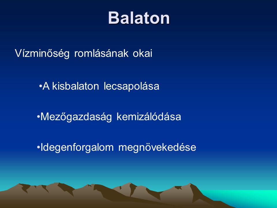 Balaton Vízminőség romlásának okai A kisbalaton lecsapolása