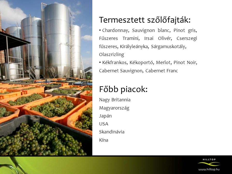 Termesztett szőlőfajták: