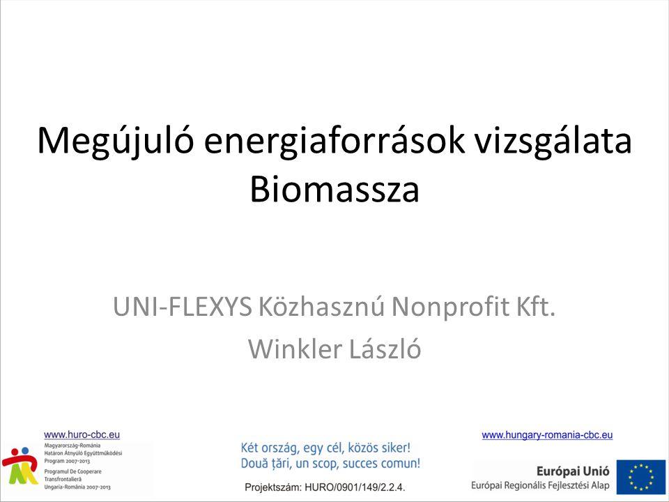 Megújuló energiaforrások vizsgálata Biomassza
