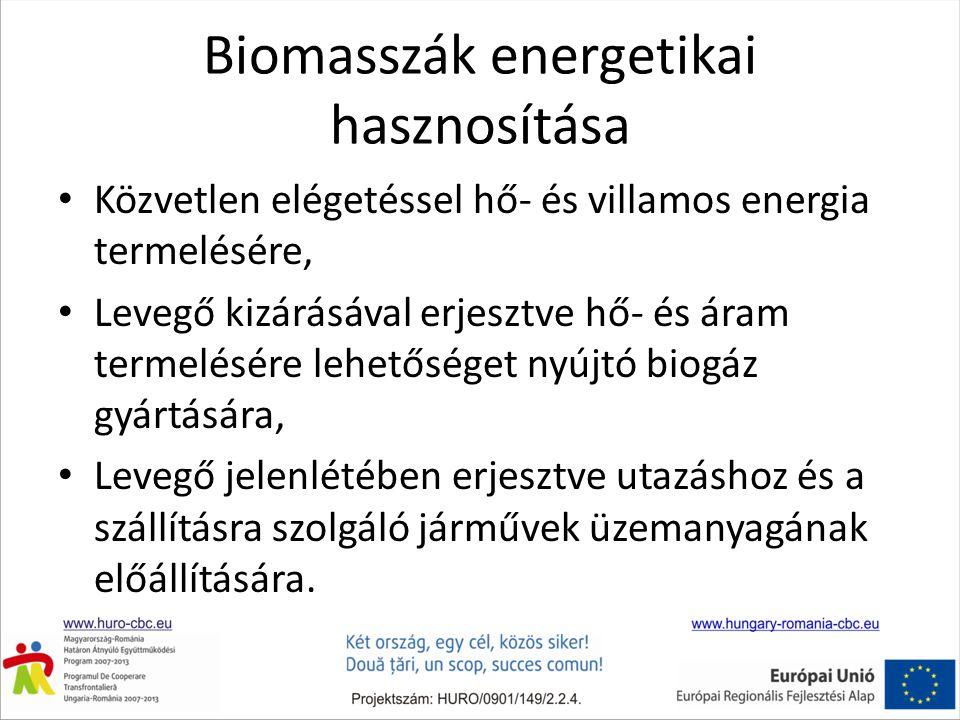 Biomasszák energetikai hasznosítása