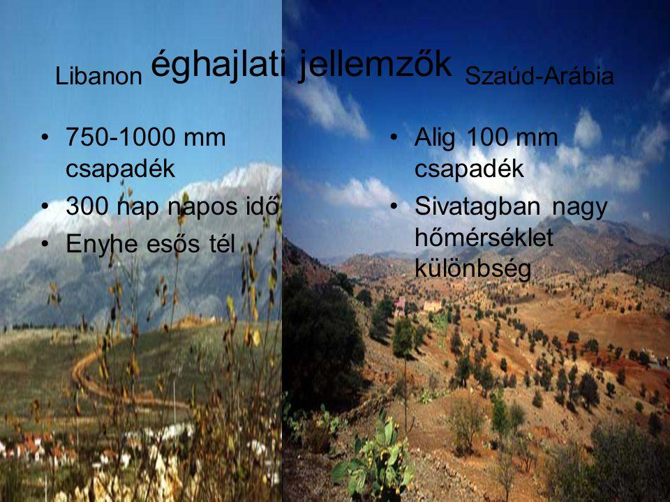Libanon éghajlati jellemzők Szaúd-Arábia