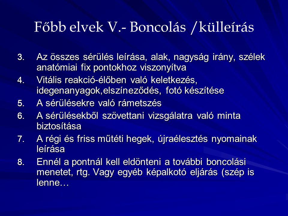 Főbb elvek V.- Boncolás /külleírás