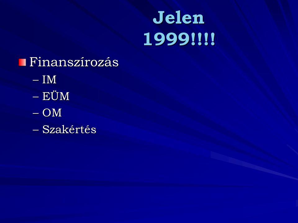 Jelen 1999!!!! Finanszírozás IM EÜM OM Szakértés