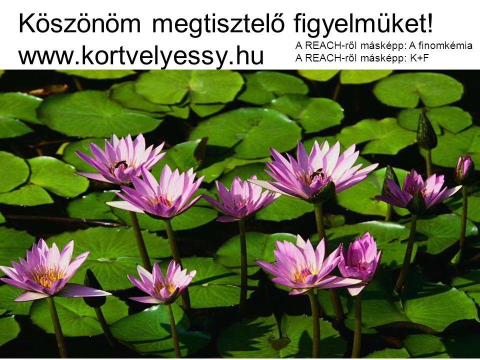 Köszönöm megtisztelő figyelmüket! www.kortvelyessy.hu