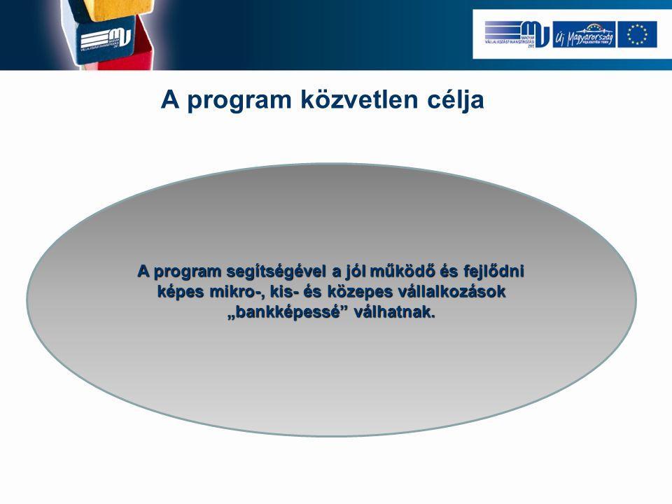 A program közvetlen célja