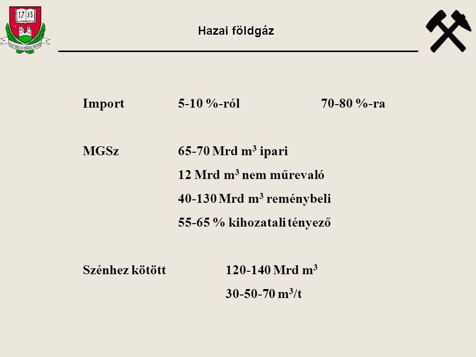 Import 5-10 %-ról 70-80 %-ra MGSz 65-70 Mrd m3 ipari