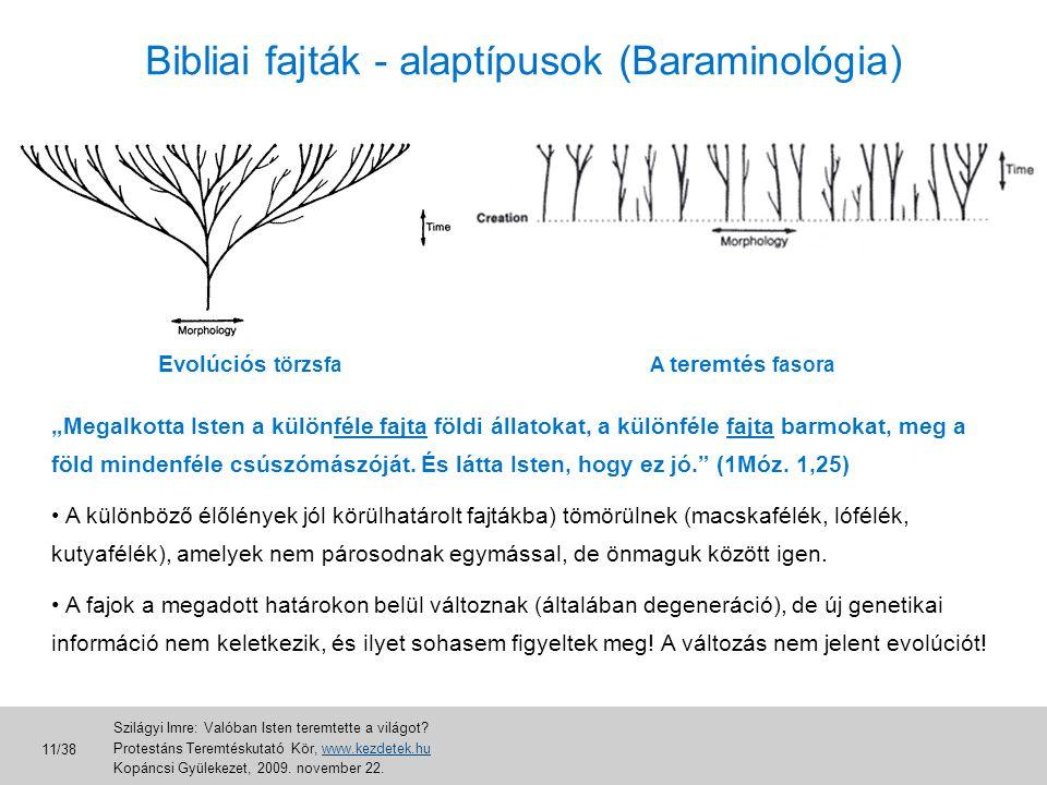 Bibliai fajták - alaptípusok (Baraminológia)