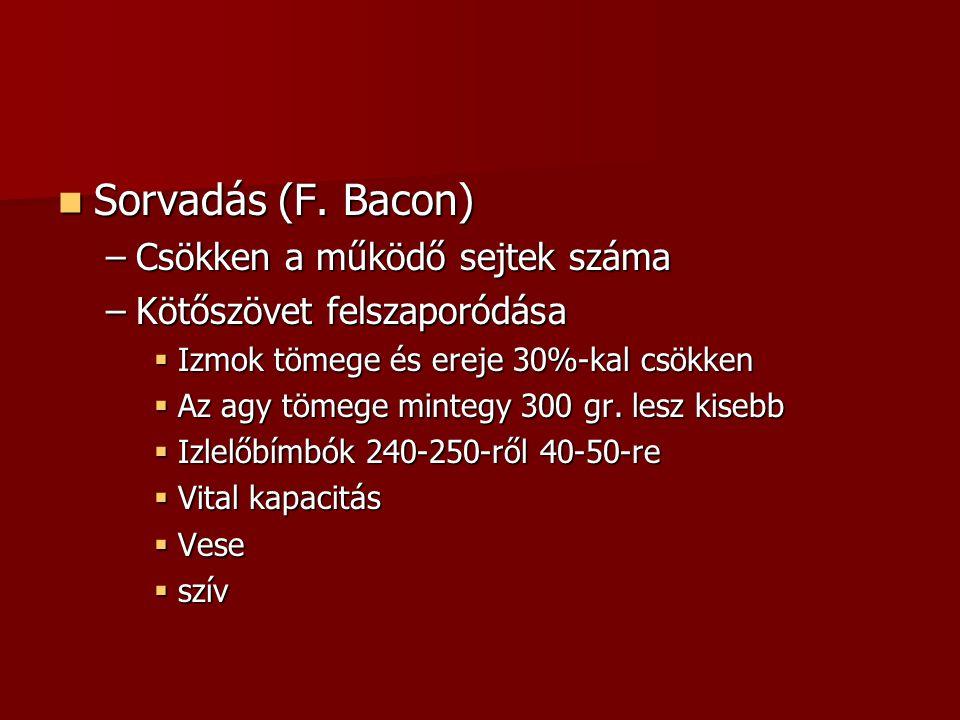 Sorvadás (F. Bacon) Csökken a működő sejtek száma
