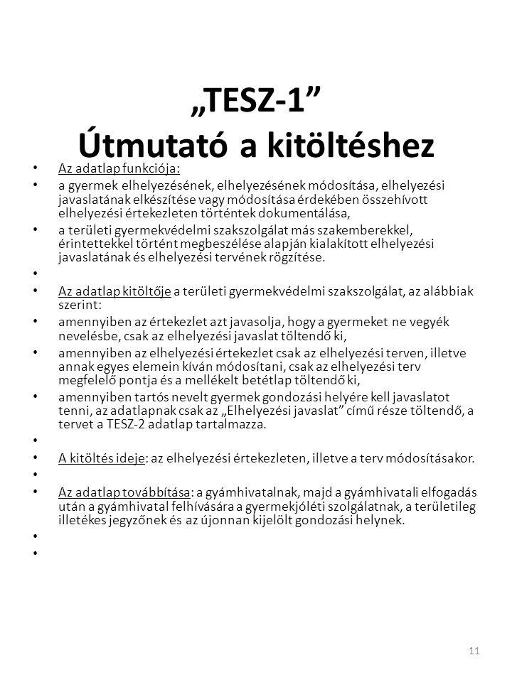 """""""TESZ-1 Útmutató a kitöltéshez"""