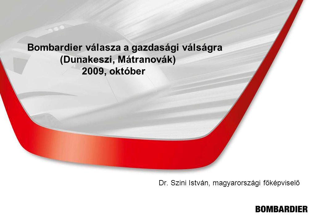 Dr. Szini István, magyarországi főképviselő