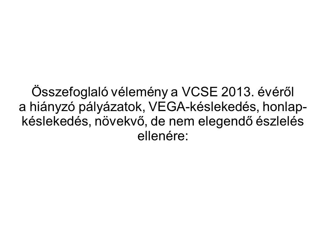 Összefoglaló vélemény a VCSE 2013. évéről