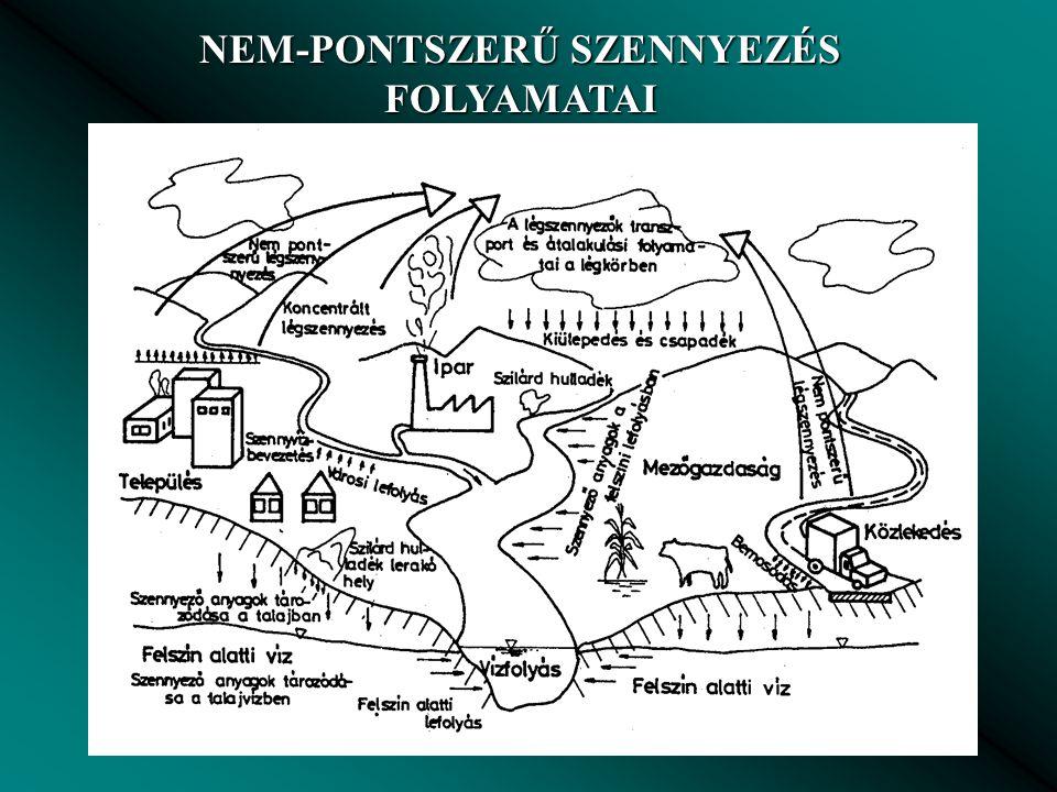 NEM-PONTSZERŰ SZENNYEZÉS FOLYAMATAI