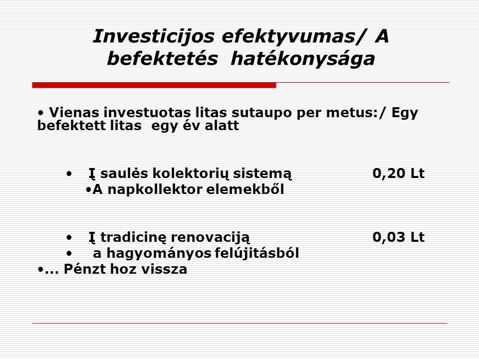 Investicijos efektyvumas/ A befektetés hatékonysága