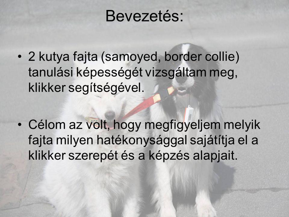 Bevezetés: 2 kutya fajta (samoyed, border collie) tanulási képességét vizsgáltam meg, klikker segítségével.