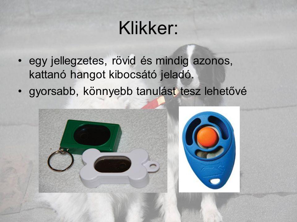 Klikker: egy jellegzetes, rövid és mindig azonos, kattanó hangot kibocsátó jeladó.