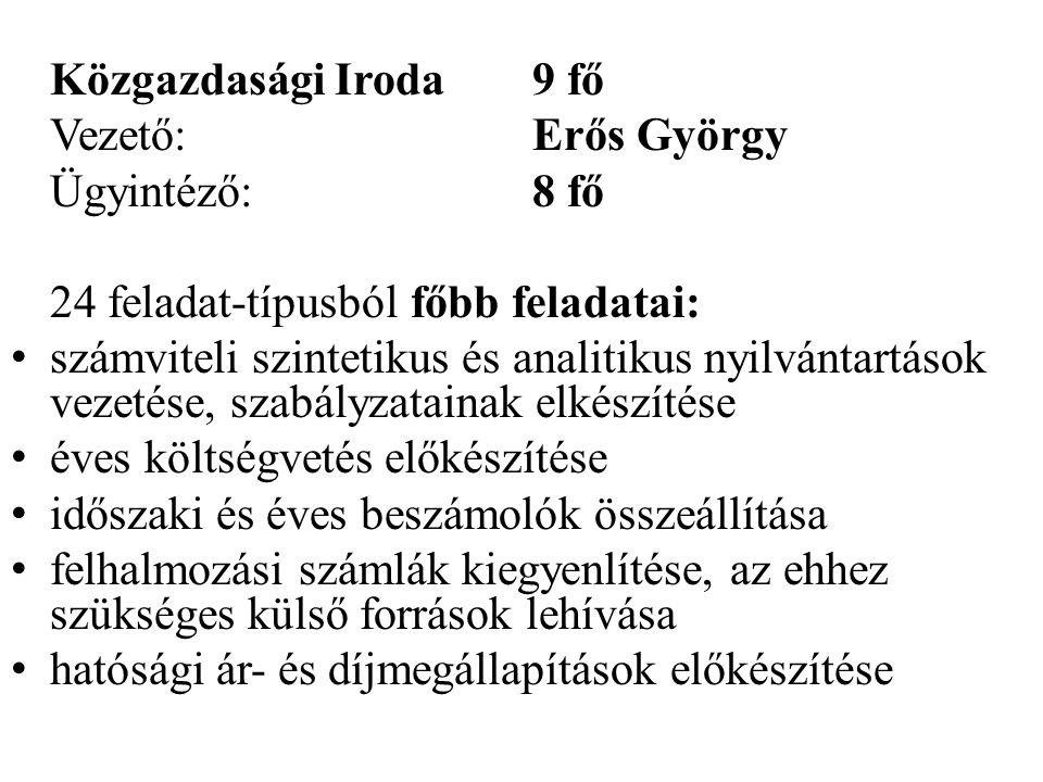 Közgazdasági Iroda 9 fő Vezető: Erős György. Ügyintéző: 8 fő. 24 feladat-típusból főbb feladatai: