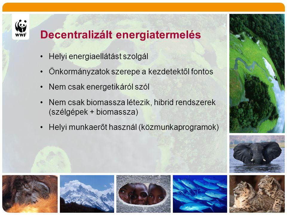 Decentralizált energiatermelés