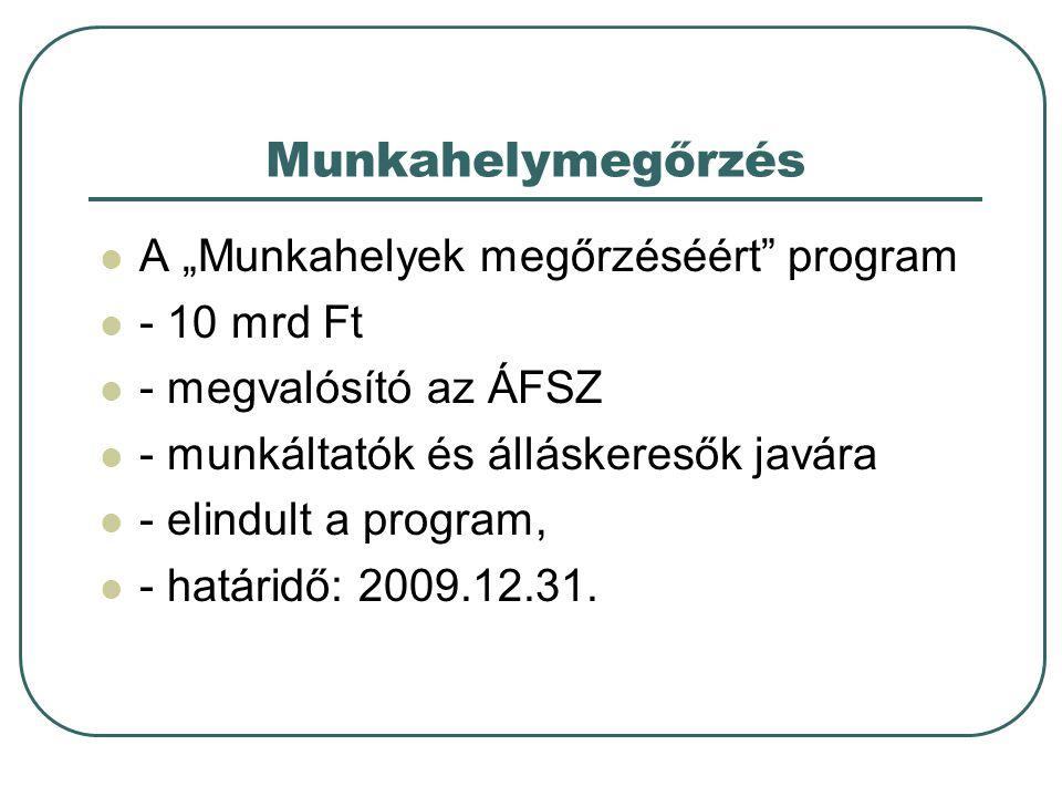 """Munkahelymegőrzés A """"Munkahelyek megőrzéséért program - 10 mrd Ft"""