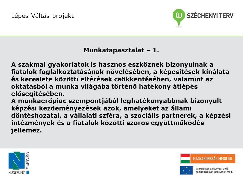 Lépés-Váltás projekt Munkatapasztalat – 1.