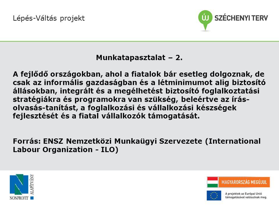 Lépés-Váltás projekt Munkatapasztalat – 2.