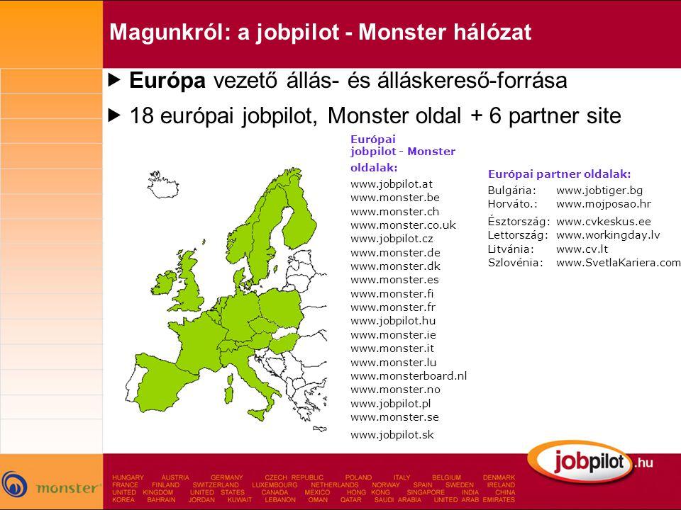 Magunkról: a jobpilot - Monster hálózat