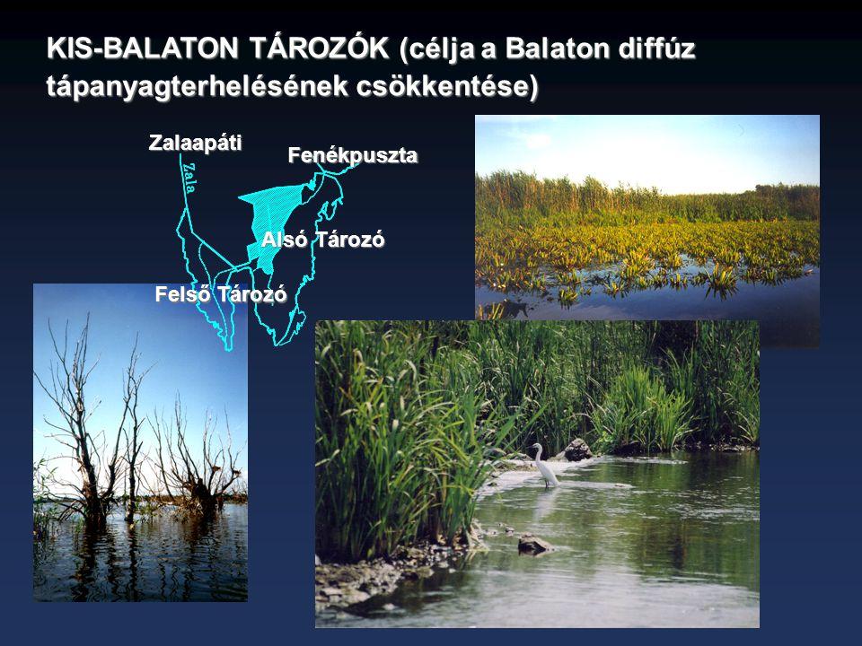 KIS-BALATON TÁROZÓK (célja a Balaton diffúz tápanyagterhelésének csökkentése)
