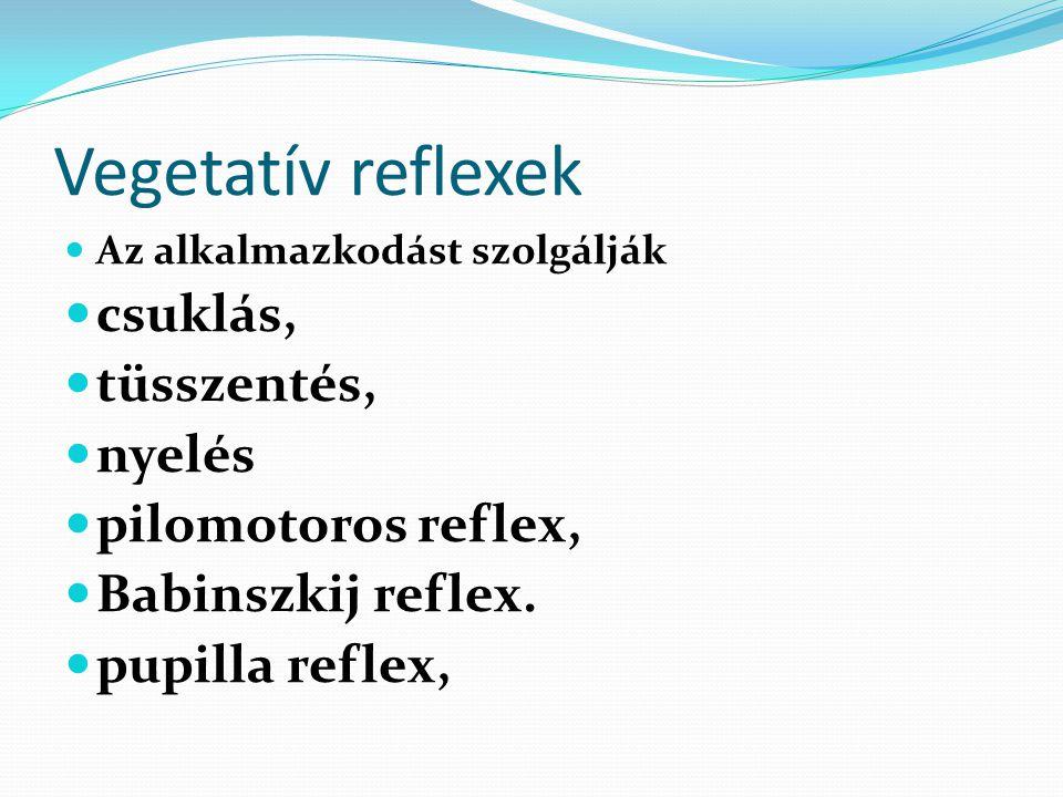 Vegetatív reflexek csuklás, tüsszentés, nyelés pilomotoros reflex,