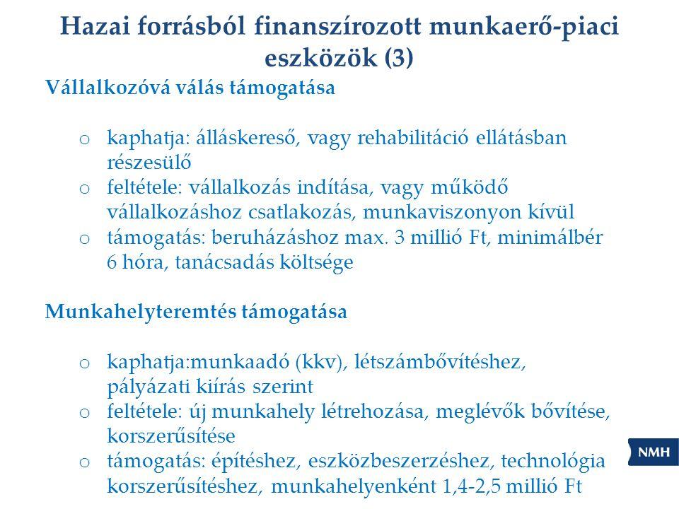 Hazai forrásból finanszírozott munkaerő-piaci eszközök (3)