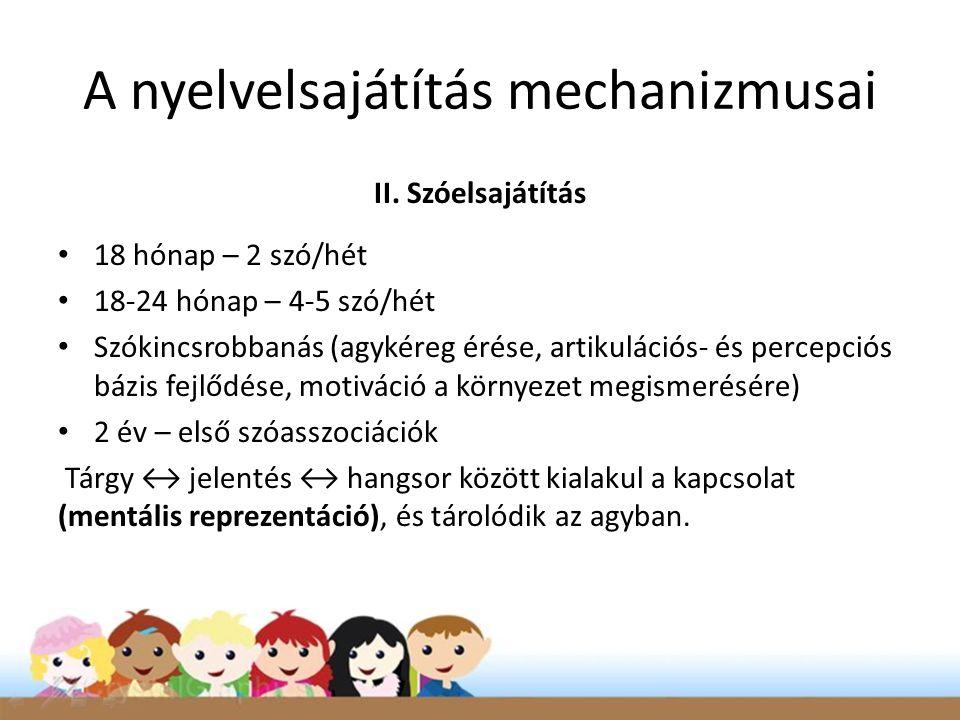 A nyelvelsajátítás mechanizmusai