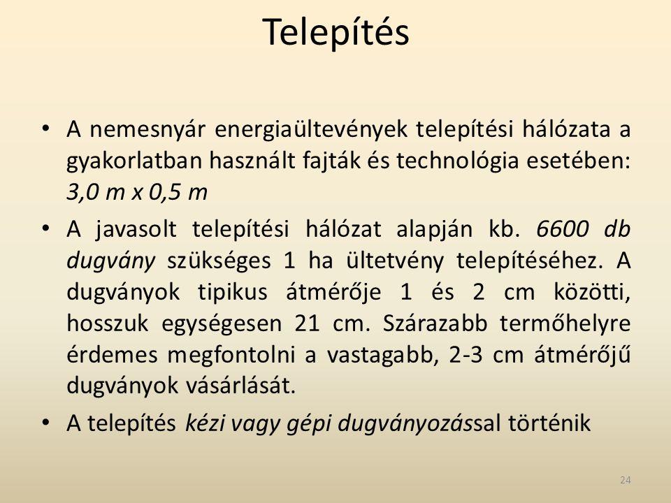Telepítés A nemesnyár energiaültevények telepítési hálózata a gyakorlatban használt fajták és technológia esetében: 3,0 m x 0,5 m.