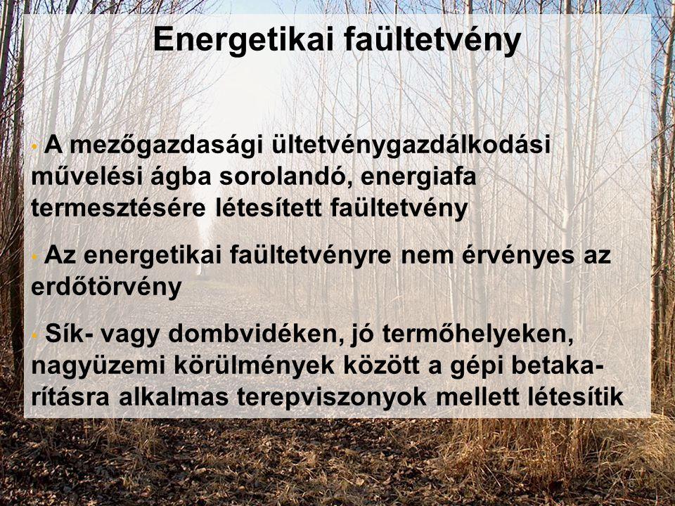 Energetikai faültetvény
