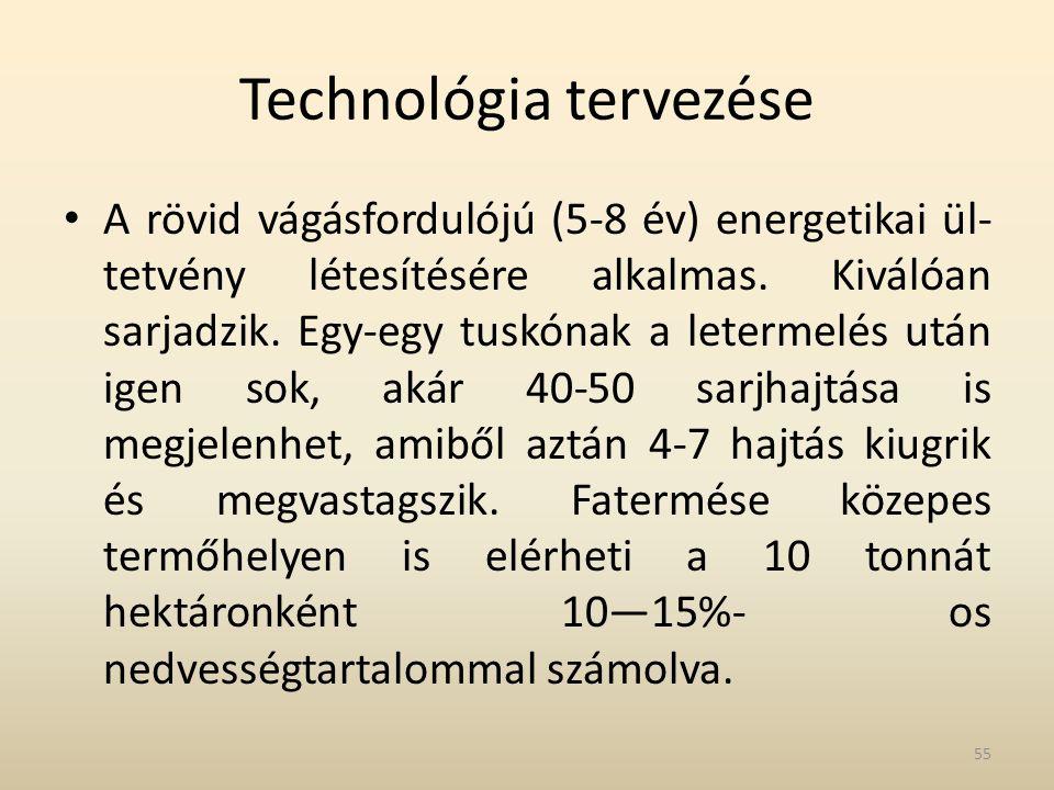 Technológia tervezése