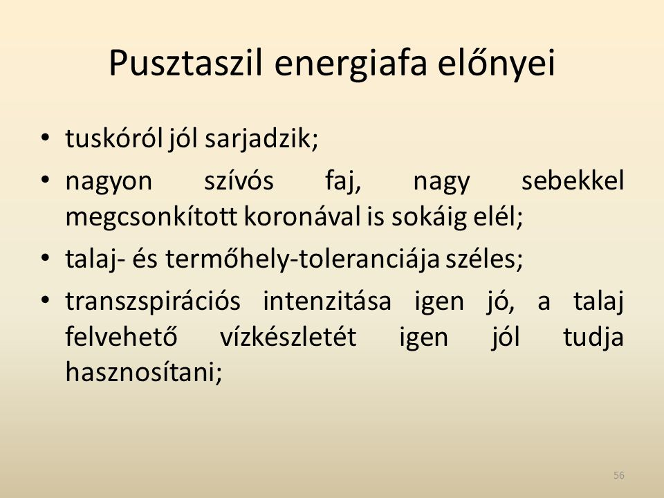 Pusztaszil energiafa előnyei