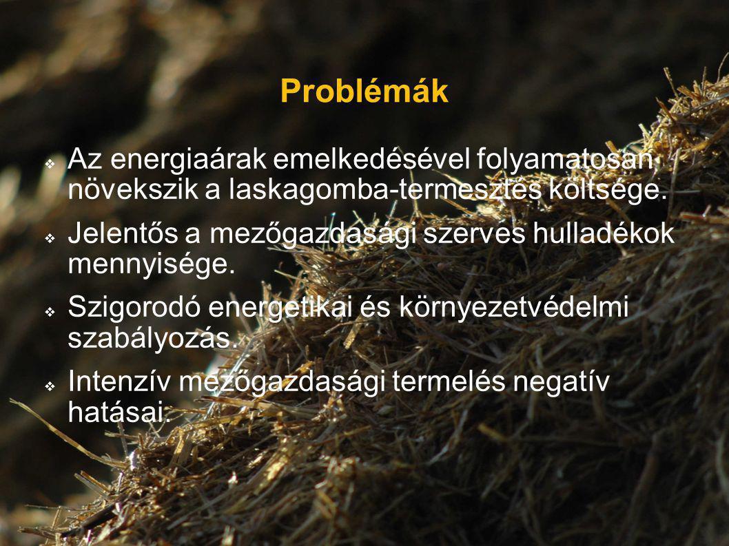 Problémák Az energiaárak emelkedésével folyamatosan növekszik a laskagomba-termesztés költsége.