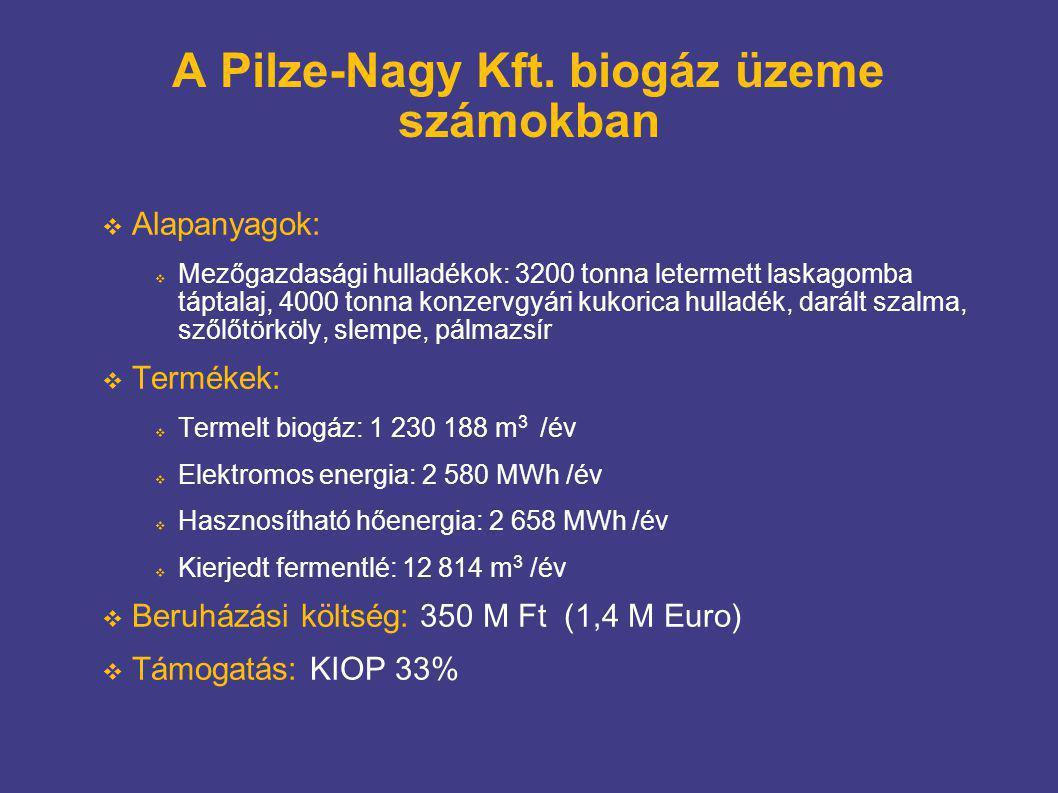 A Pilze-Nagy Kft. biogáz üzeme számokban