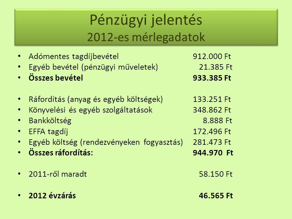Pénzügyi jelentés 2012-es mérlegadatok