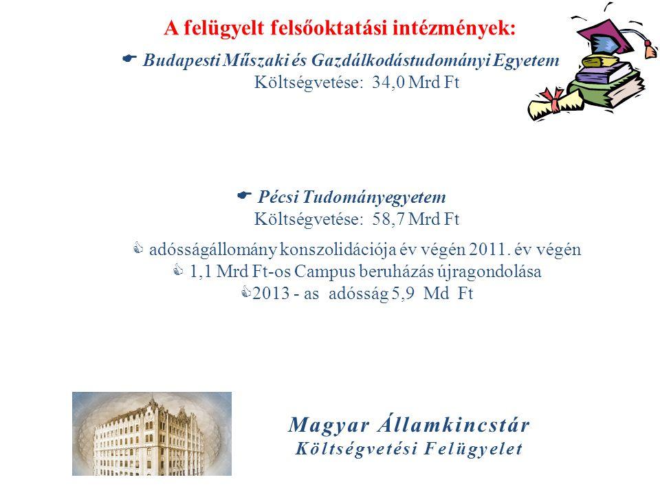 A felügyelt felsőoktatási intézmények: Költségvetési Felügyelet