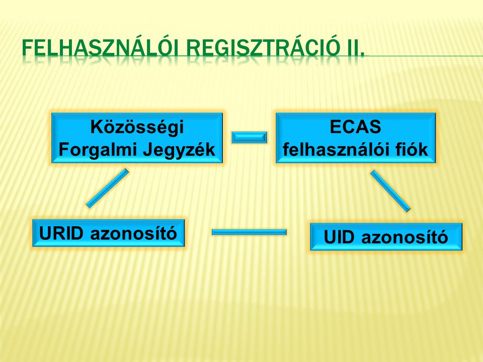 Felhasználói Regisztráció II.