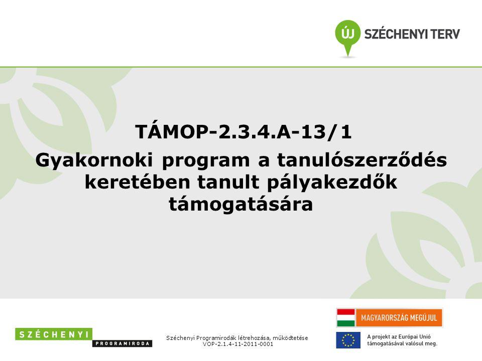TÁMOP-2.3.4.A-13/1 Gyakornoki program a tanulószerződés keretében tanult pályakezdők támogatására. Széchenyi Programirodák létrehozása, működtetése.