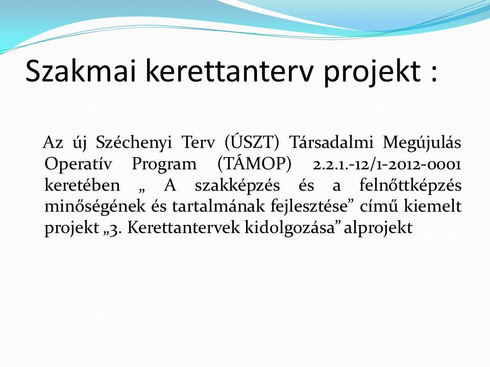 Szakmai kerettanterv projekt :