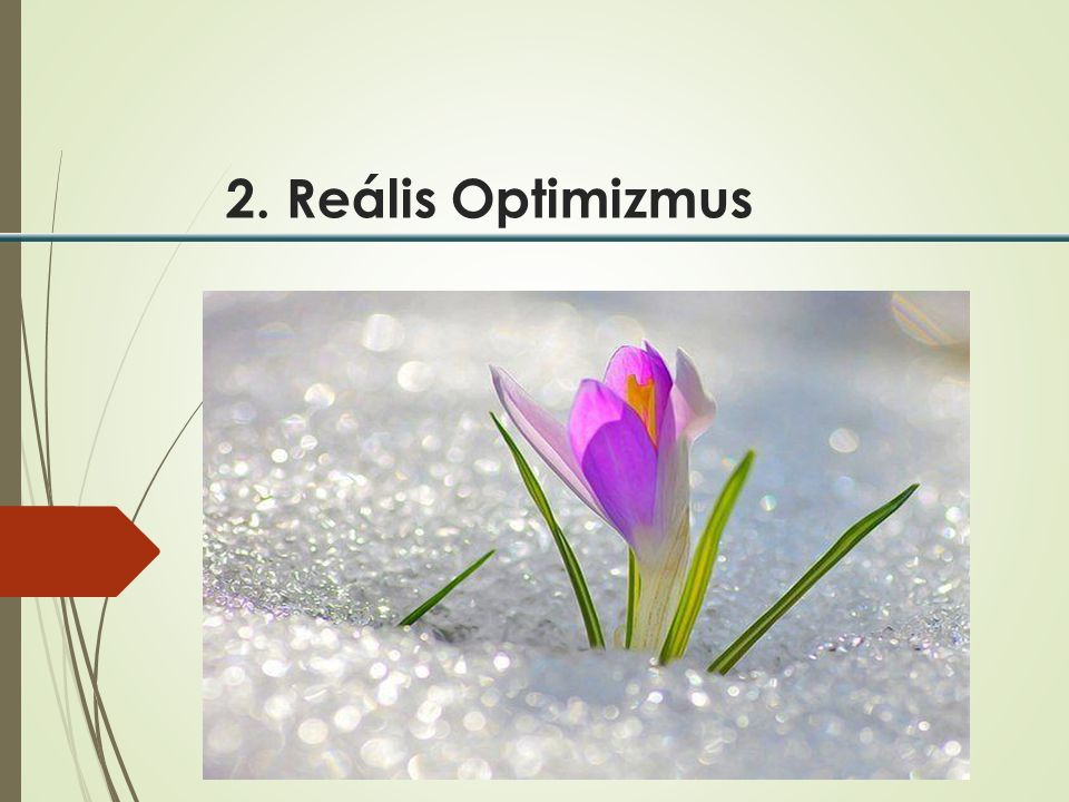 2. Reális Optimizmus