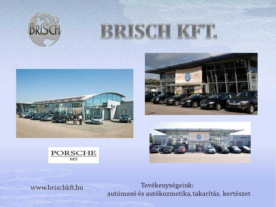 BRISCH KFT. Tevékenységeink: www.brischkft.hu